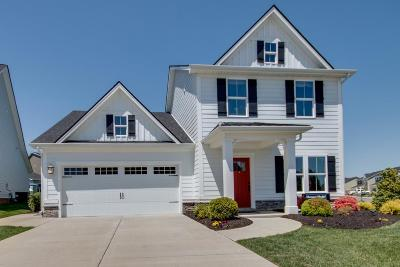 Spring Hill Single Family Home For Sale: 104 Shanache Dr