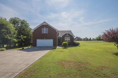 Christiana Single Family Home For Sale: 10981 New Zion Rd