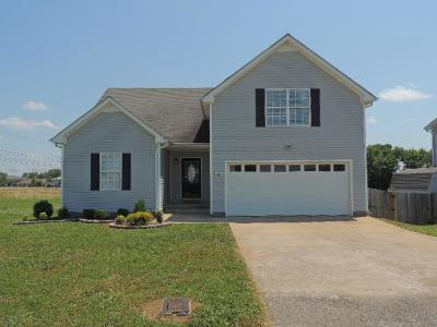Clarksville Single Family Home For Sale: 3891 Mackenzie Dr