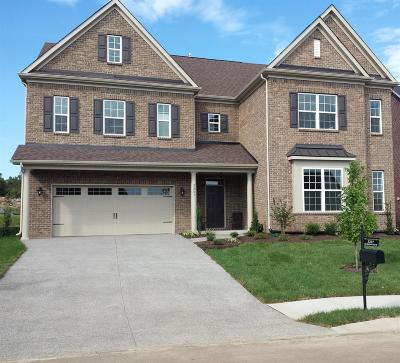 Mount Juliet Single Family Home For Sale: 5207 Giardino Dr