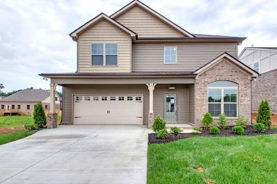 Mount Juliet Single Family Home For Sale: 31 Eagles Court