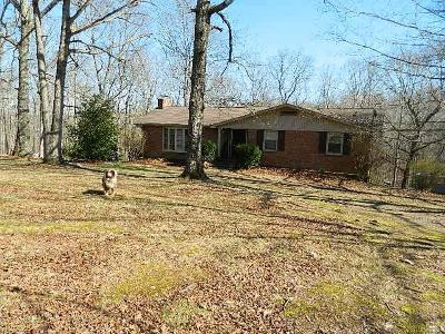 Kingston Springs Single Family Home For Sale: 1391 Webb Ridge Rd.