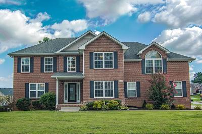 Clarksville TN Single Family Home For Sale: $295,000