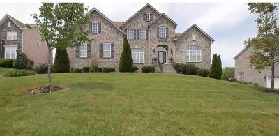 Williamson County Single Family Home For Sale: 9654 Boswell Ct