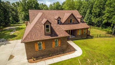 Goodlettsville Single Family Home For Sale: 1257 Walker Rd