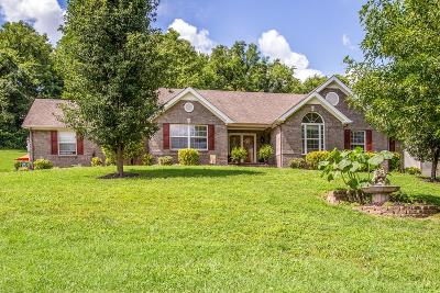 Spring Hill Single Family Home For Sale: 1779 Vp Lunn Dr