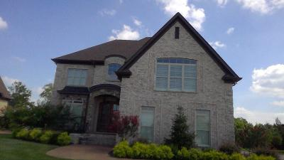 Mount Juliet Single Family Home For Sale: 1213 Abernathy Way