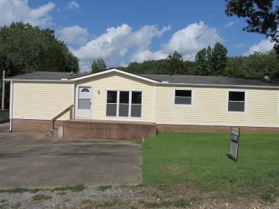 Dover Single Family Home For Sale: 206 Lakeshore Dr