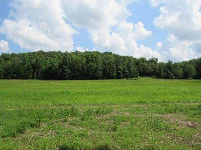Residential Lots & Land For Sale: S Toms Creek Rd