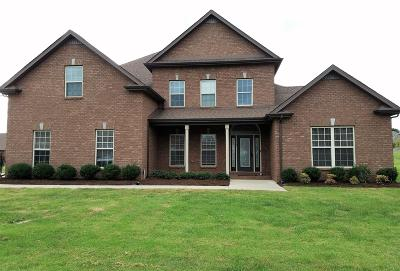 Clarksville Single Family Home For Sale: 3152 Carrie Taylor Cir