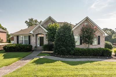 Sumner County Single Family Home For Sale: 138 Dalton Cir