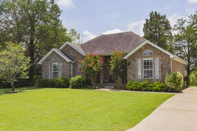 Lavergne Single Family Home For Sale: 601 Hollandale Rd