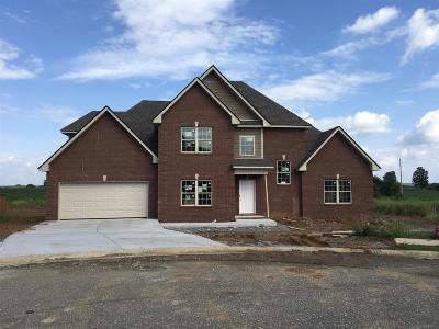Pleasant View Single Family Home For Sale: 1017 Azalea Ct S Lot 65