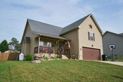 Clarksville Single Family Home For Sale: 1360 Mutual Drive