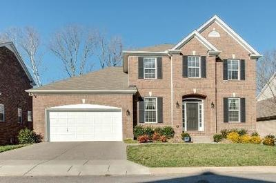 Mount Juliet Single Family Home For Sale: 609 Heritage Dr