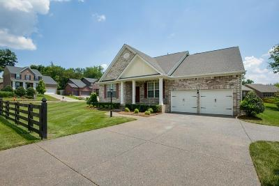 Mount Juliet Single Family Home For Sale: 4674 Hessey Rd