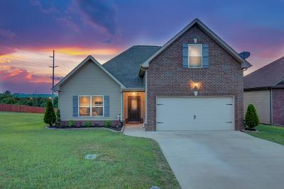 Clarksville Single Family Home For Sale: 1065 Henry Place Blvd
