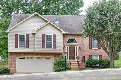 Hendersonville Single Family Home For Sale: 103 Bentree Ct