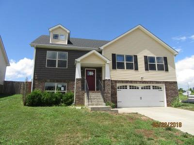 Montgomery County Single Family Home For Sale: 700 Banister Ln