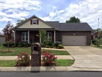 Sumner County Single Family Home For Sale: 169 Sparrow Ln