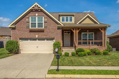 Williamson County Single Family Home For Sale: 3083 Foust Dr