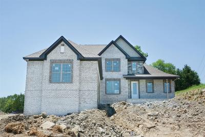 Sumner County Single Family Home For Sale: 105 Monteview Drive Lot 199