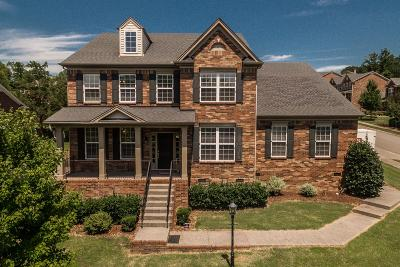 Sumner County Single Family Home For Sale: 99 Berry Hill Dr