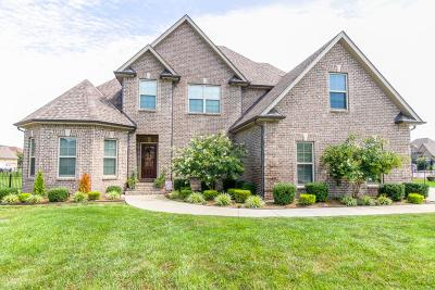 Rutherford County Single Family Home For Sale: 1208 Lewis Downs Dr