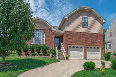 Nashville Single Family Home For Sale: 2549 Jordan Ridge Dr