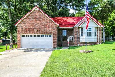 Rutherford County Single Family Home For Sale: 209 Priest View Dr