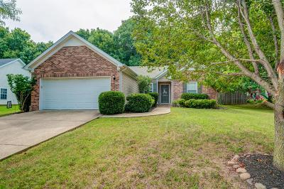 Spring Hill Single Family Home For Sale: 1925 Portview Dr