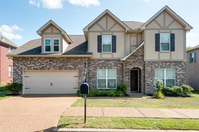 Nashville Single Family Home For Sale: 613 Collinscrest Ct