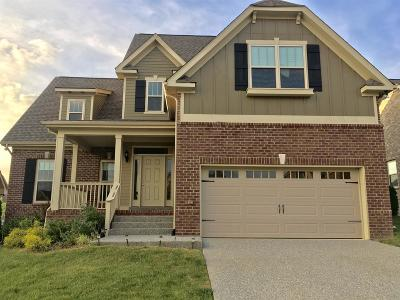 Spring Hill  Single Family Home For Sale: 4009 Madrid Dr.