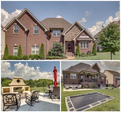 Spring Hill Single Family Home For Sale: 4060 Miles Johnson Pkwy