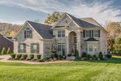 Brentwood Single Family Home For Sale: 9606 Bouchaine Pass