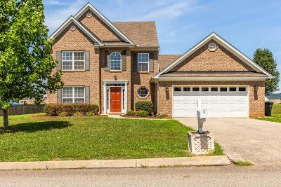 Spring Hill  Single Family Home For Sale: 3008 Commonwealth Dr
