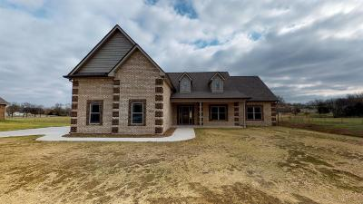 Eagleville Single Family Home For Sale: 213 Eaglecrest Drive