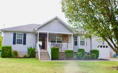 Smyrna Single Family Home For Sale: 132 Hermitage Dr