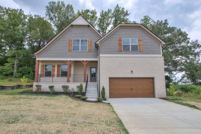 Mount Juliet Single Family Home For Sale: 728 Masters Way