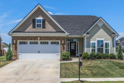 Murfreesboro Single Family Home For Sale: 2834 Leipers Fork Trl