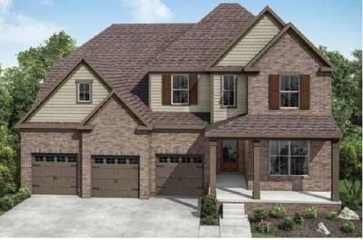 Mount Juliet Single Family Home For Sale: 3051 Elliott Drive #90