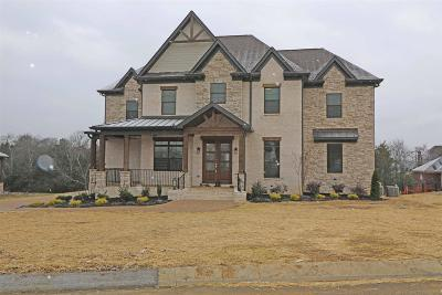 Mount Juliet Single Family Home For Sale: 1304 Stovall Lane