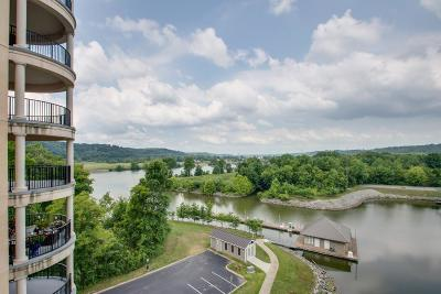 Cheatham County Condo/Townhouse For Sale: 400 Warioto Way Apt 614 #614