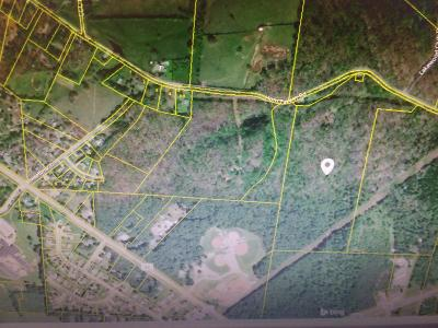 Williamson County Residential Lots & Land For Sale: 7405 Horn Tavern Rd