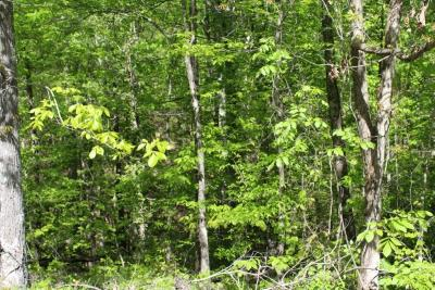 Dover Residential Lots & Land For Sale: Eagle Nest Court