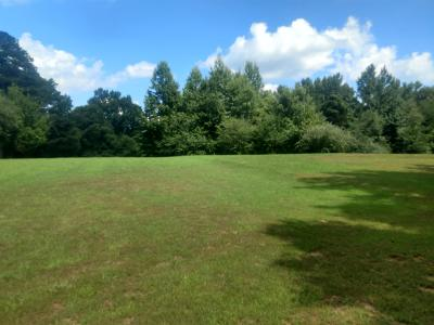Camden Residential Lots & Land For Sale: 1371 Natchez Trace Rd