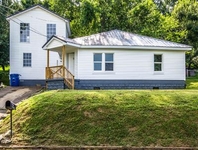 Mount Pleasant Single Family Home For Sale: 203 Edgewood St