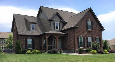 Spring Hill Single Family Home For Sale: 3197 Appian Way Lot 97