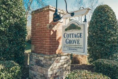 Goodlettsville Condo/Townhouse For Sale: 100 Placid Grove Ln Apt 603 #603