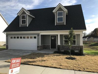Davidson County Single Family Home Under Contract - Not Showing: 1316 Busiris Drive Lot (34)